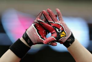 Arizona Cardinals Training Camp