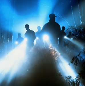 Search party shining torches into woods, night, silhouette