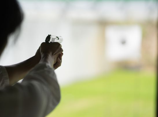 Adult point and shoot short gun