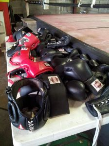 Boxing for a Cure