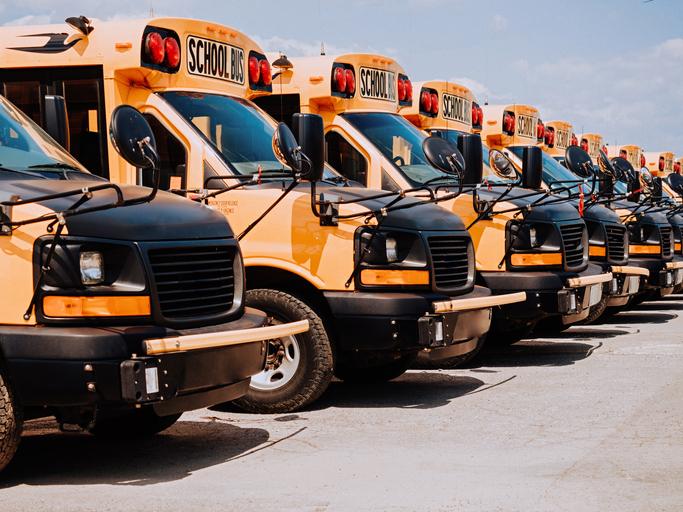School buses in line on parking spot